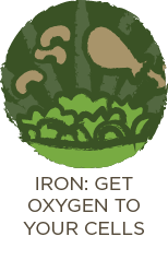 Iron: Get Oxygen To Your Cells